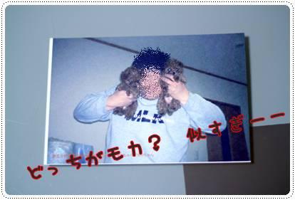 moca0112(2).jpg
