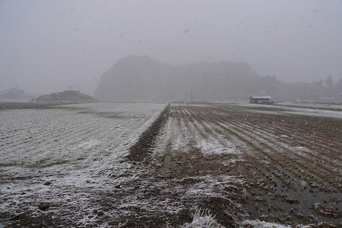 ひだ 高山 今日の風景