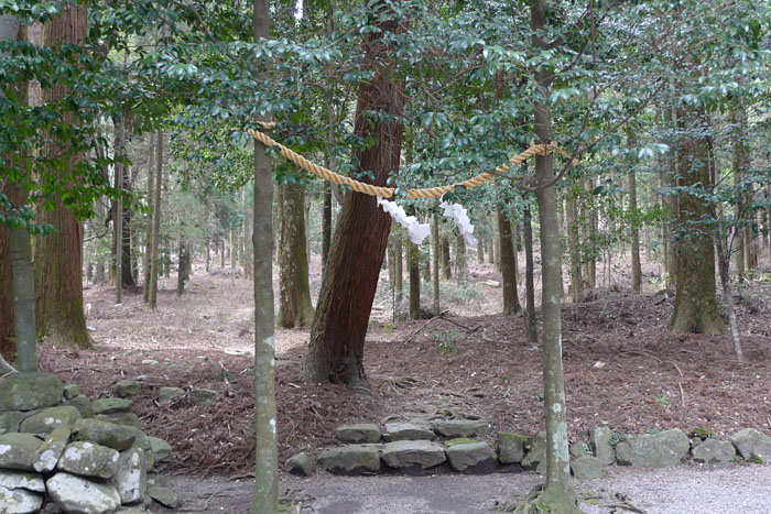 宮崎県 霧島東神社 22