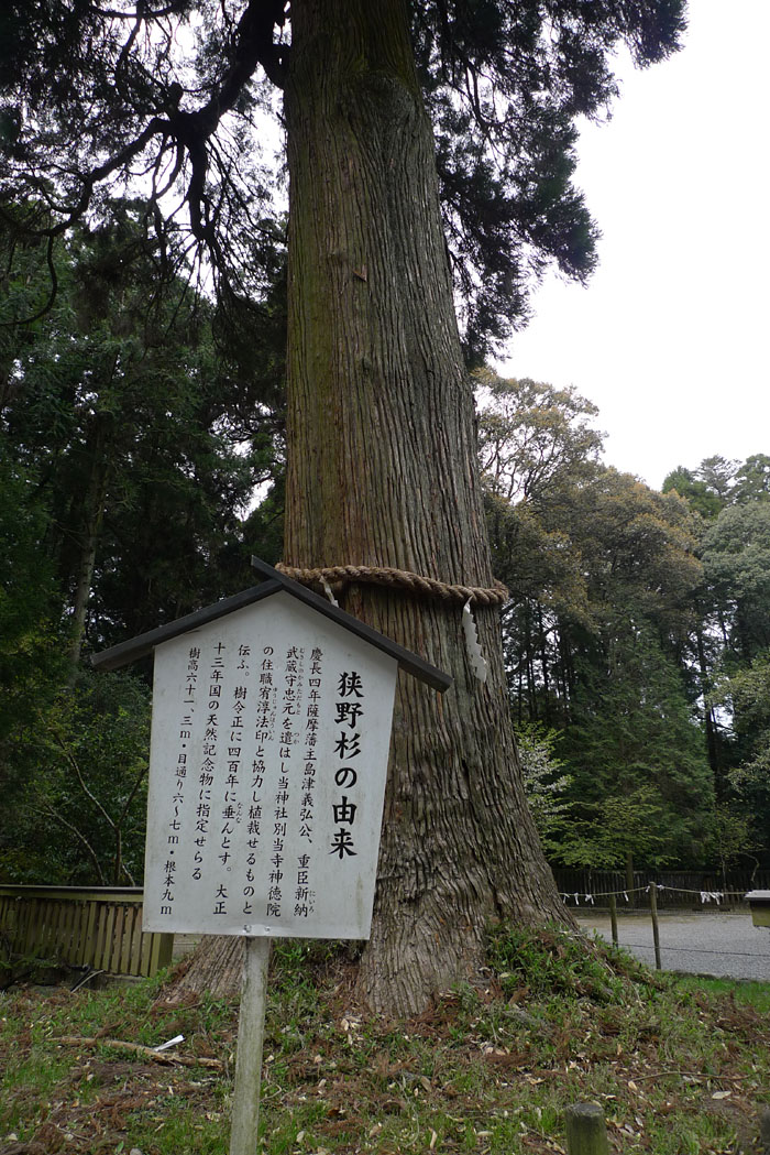 宮崎県 狭野神社 11
