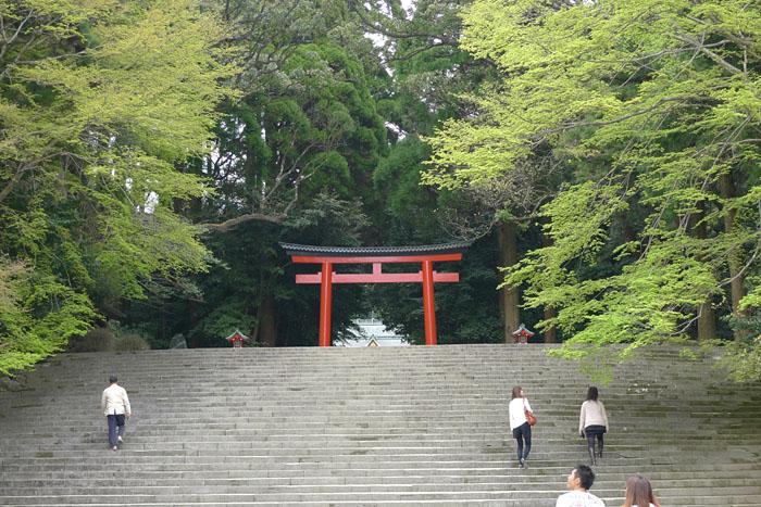 霧島神宮 3