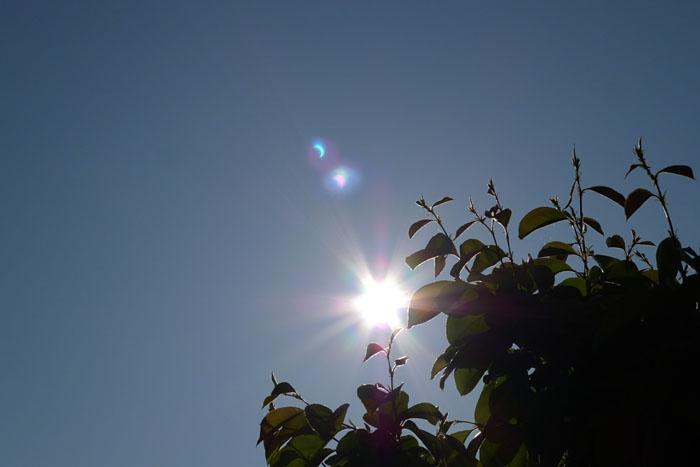 日蝕 部分日蝕 金環食