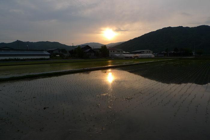 夕景 夕陽