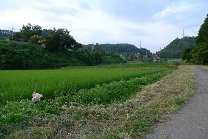 農繁期 夏 草刈り