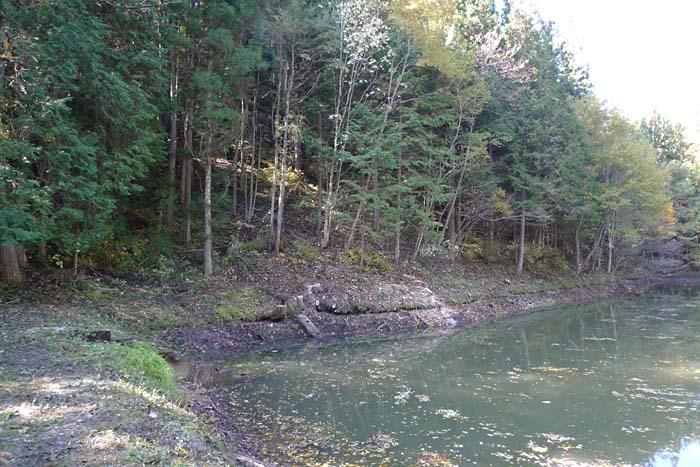 ため池の掃除 in 飛騨高山