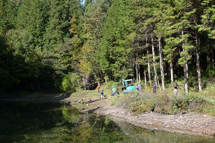 2012 池の掃除