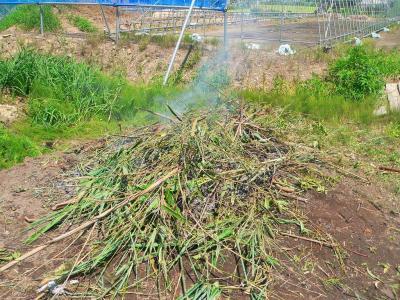 写真キャプション=新たに畑の北側のゴミ捨て場に作られた焼き場