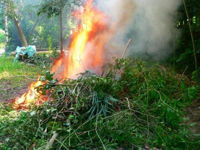写真キャプション=従来からあった奥のやけ藪の横の焼き場で勢いよく燃え上がる籐のツルと竹