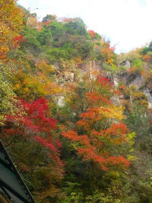 写真キャプション=修験道や忍者の修行の場であったとも言われ、その深い山は水墨画を思わせる