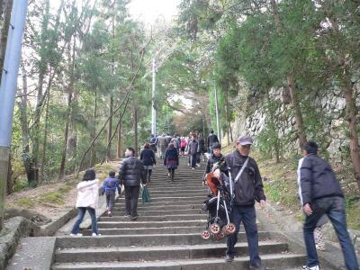 大木に囲まれた参道の石段をひたすら登り続ける参拝客