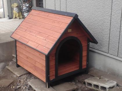 111221_犬小屋