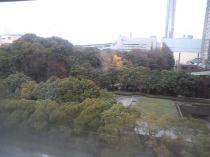 120101_小石川後楽園