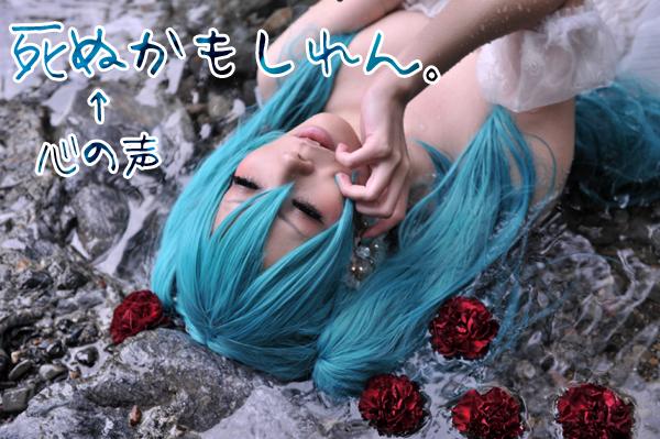 SNS_8002.jpg