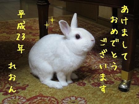 1IMG_4026.jpg