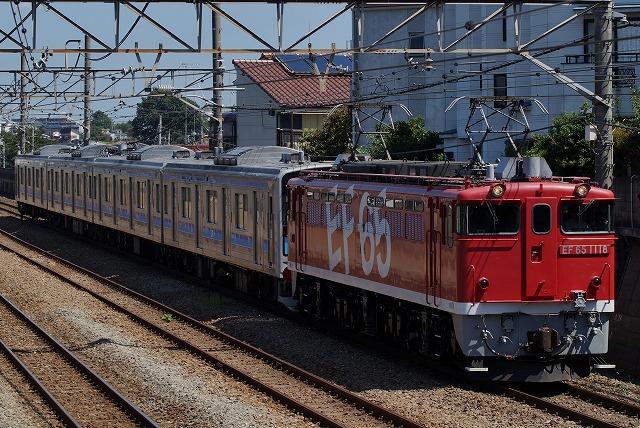 DSC01000tori.jpg