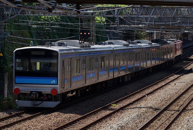 DSC01009tori.jpg
