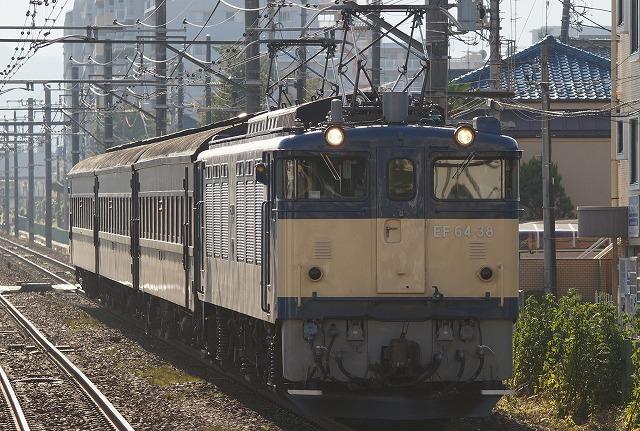 DSC02595tori.jpg