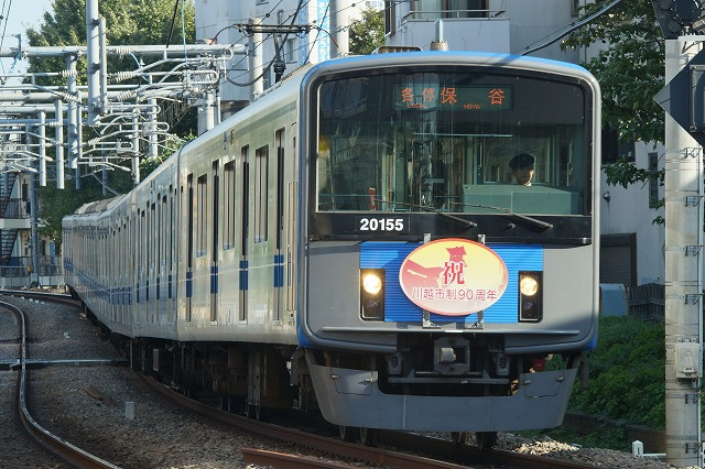 DSC03383.jpg