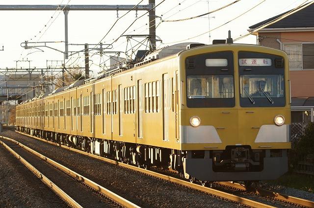 DSC03951tori.jpg