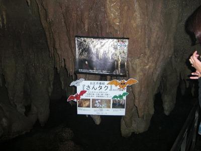 沖縄旅行 038