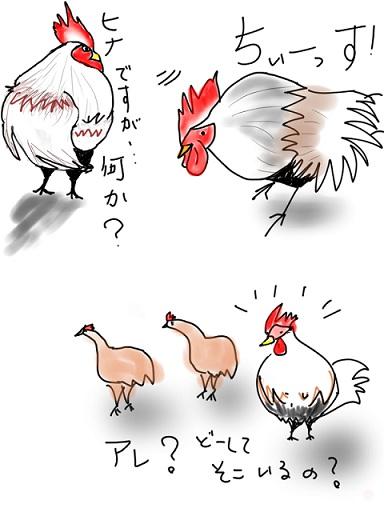 ヒナちゃん50