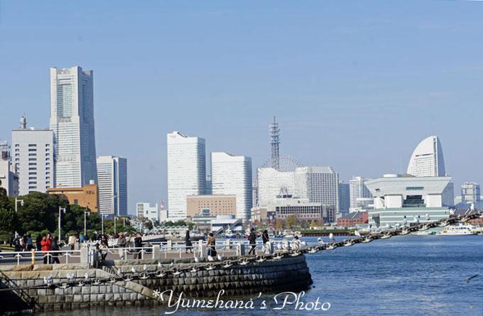 101128yokohama21SS.jpg