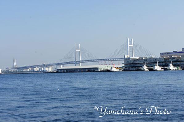 101129yokohama1SS.jpg