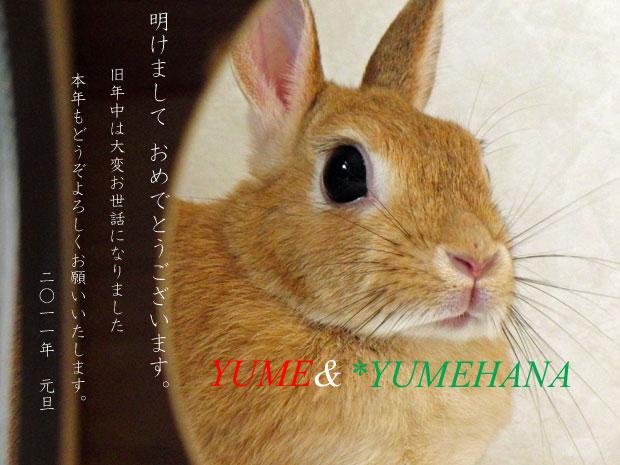 あけおめ1buS