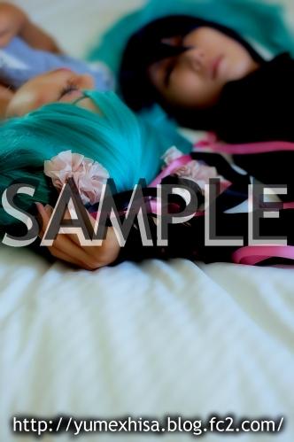 bswsample01.jpg