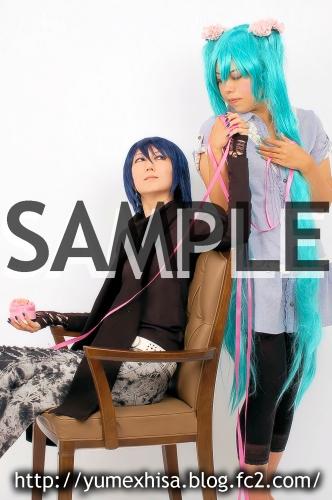 sw-sample01
