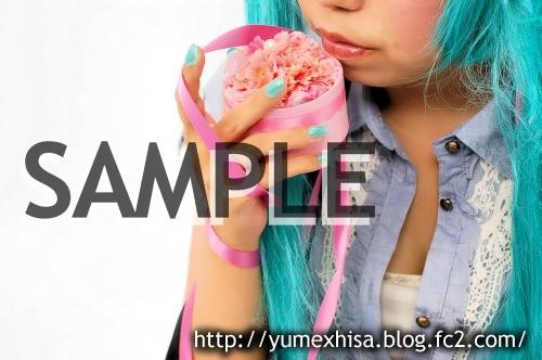 sw-sample03