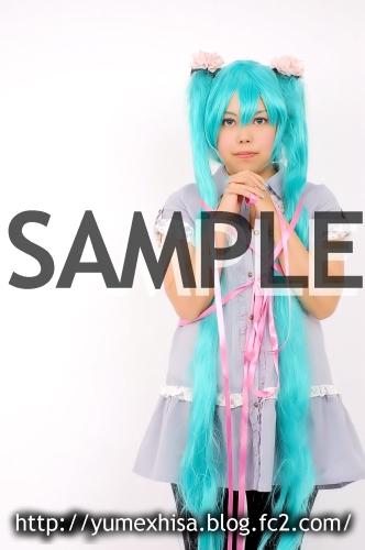 sw-sample04