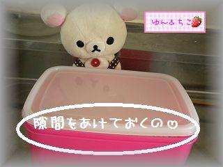 ちこちゃん日記★110★塩麹作ってみました♪-8