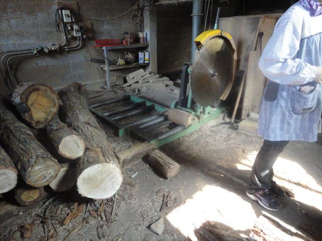 樫の木の故郷