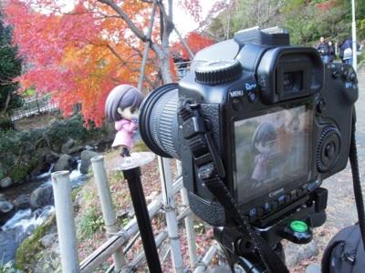 fc2blog_20121130164619b70.jpg