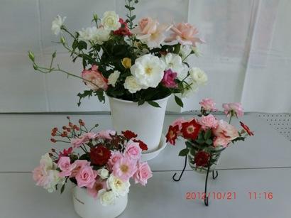 CIMG0016_20121023204236.jpg