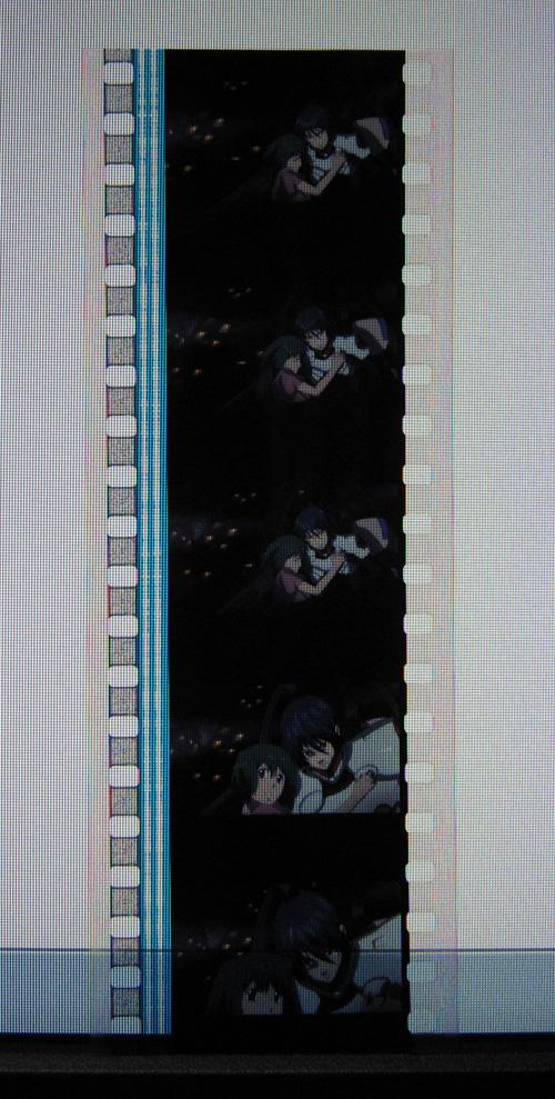 20101009a.jpg