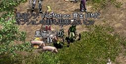 LinC2937.jpg