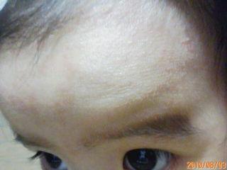 20100803201126.jpg