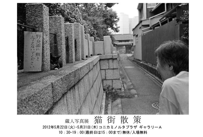 nekomachisansaku_y.jpg