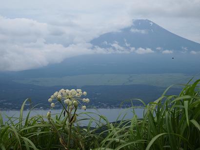 大平山からの眺め