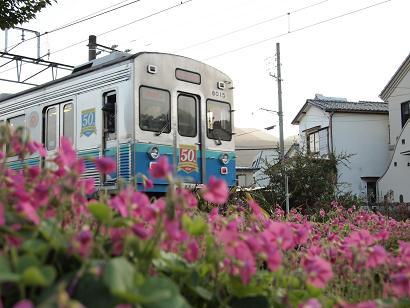 宇佐見駅近くを散策