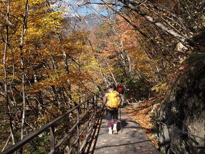 帰り道は旧森林軌道を歩きます