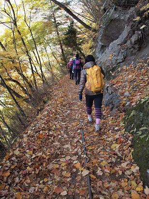 旧森林軌道は歩きやすい