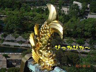 DSC01801_R.jpg