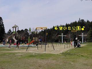 P4150041_R.jpg