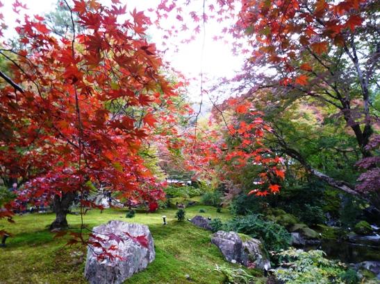 京都2011・11 (9)