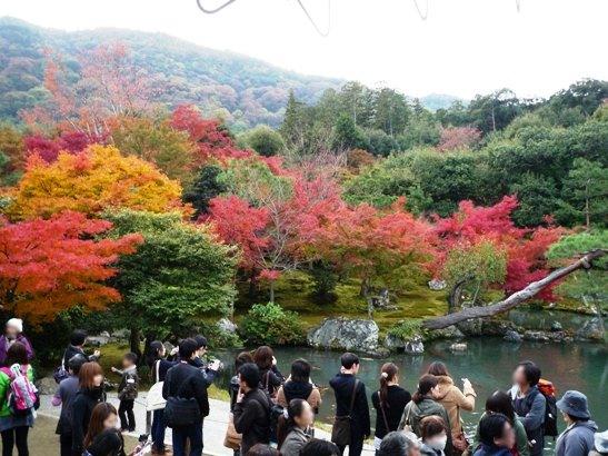 京都2011・11 (13)