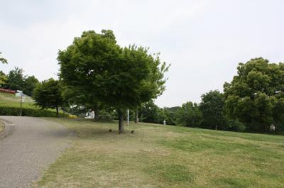 120530-1.jpg