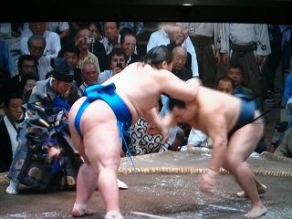 s-sumo (3)